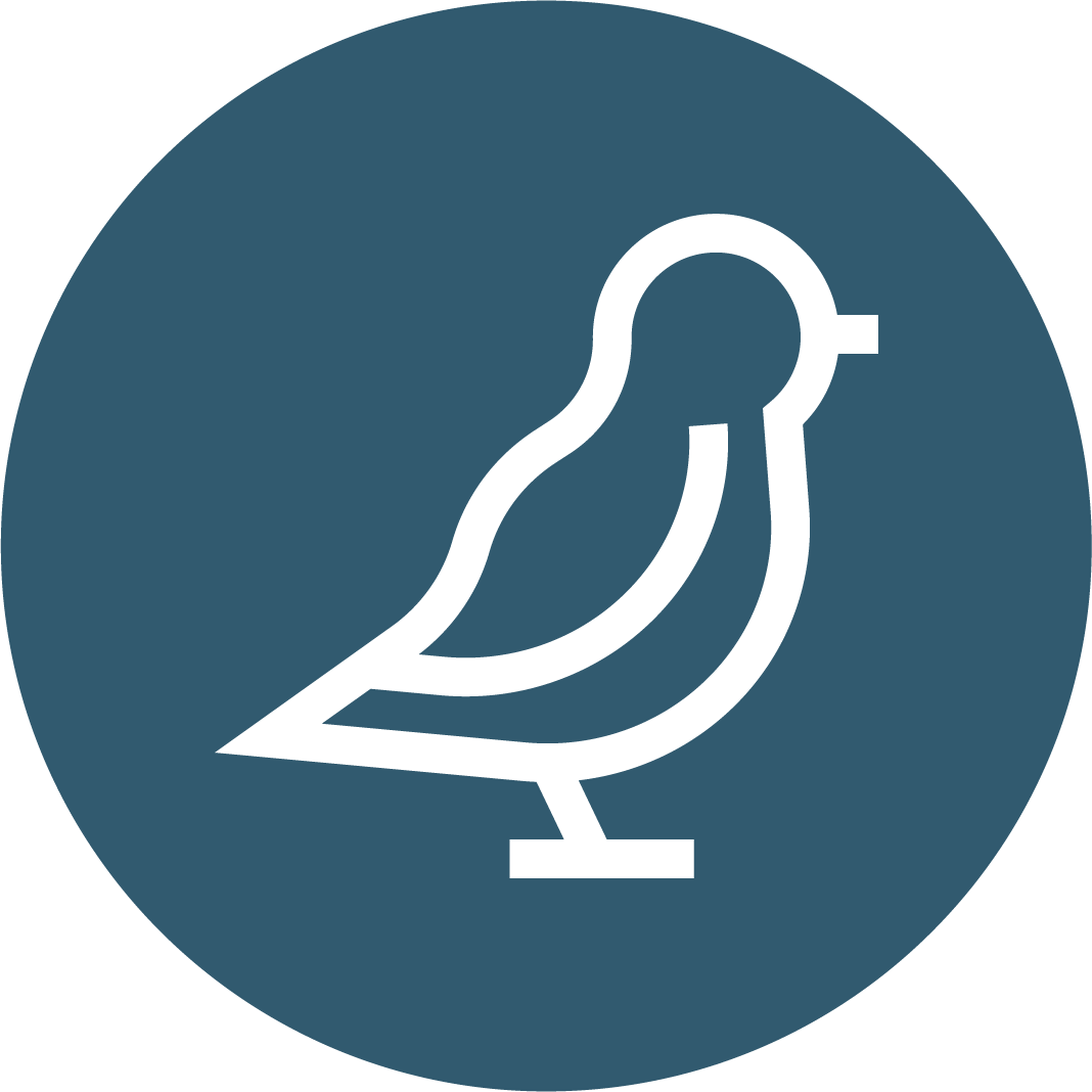 Bird Sitters
