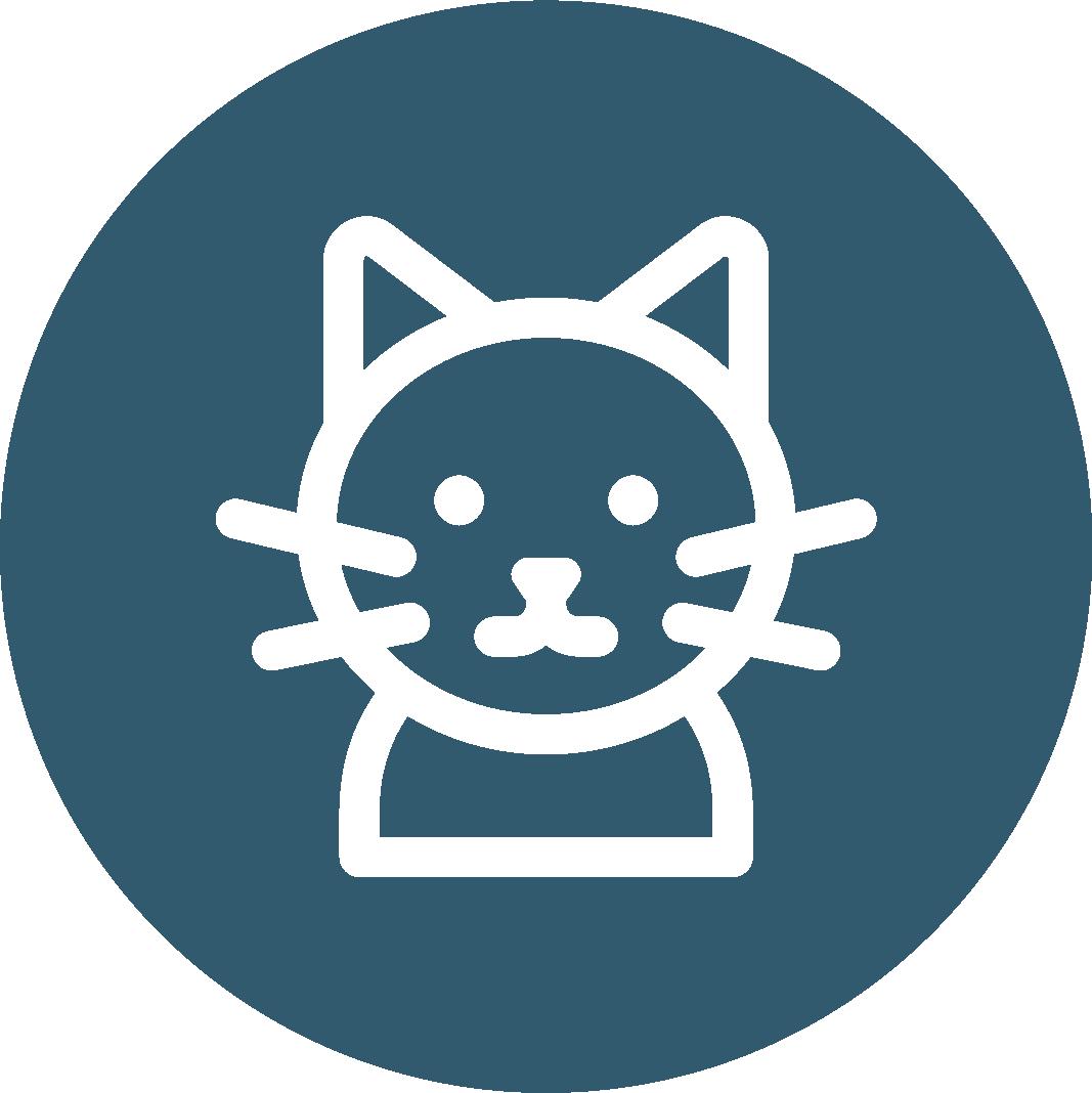 Cat Sitters